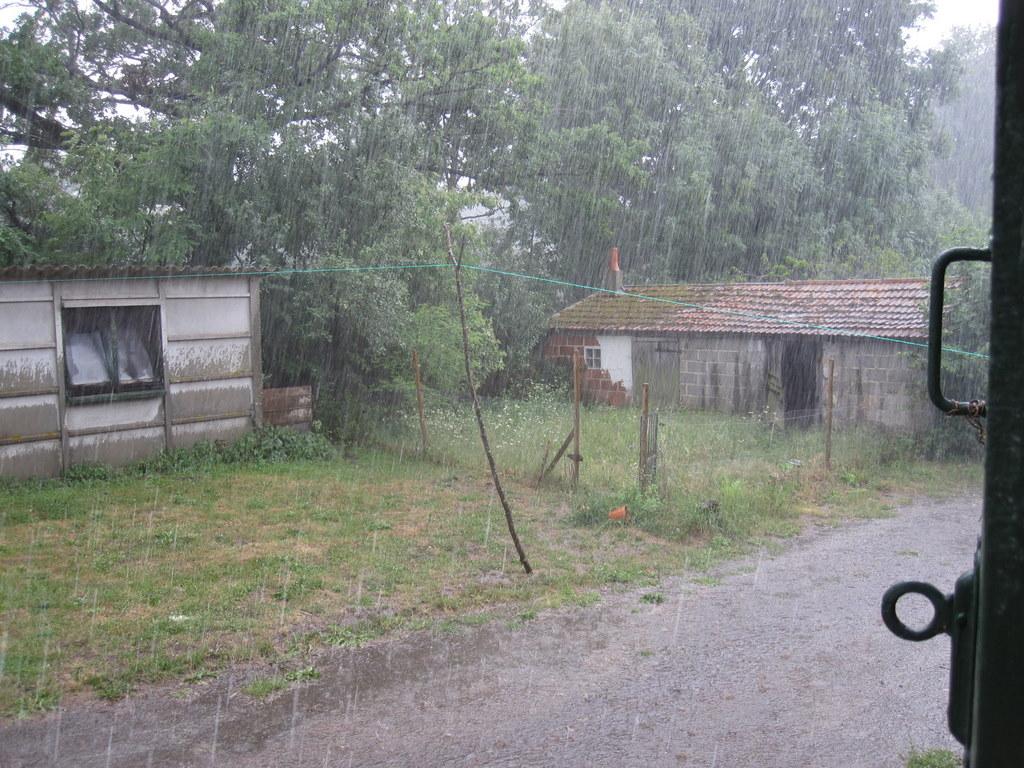 Rain! At last!!!