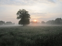 Another beautiful sunrise over the hay meadow