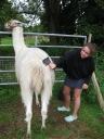 Amy is a llama maid